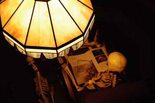 Skeleton reads the newspaper