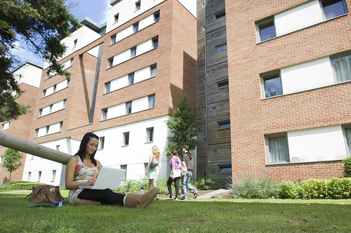 Student works on laptop on lawn outside Student Village block at UWE Frenchay Campus.