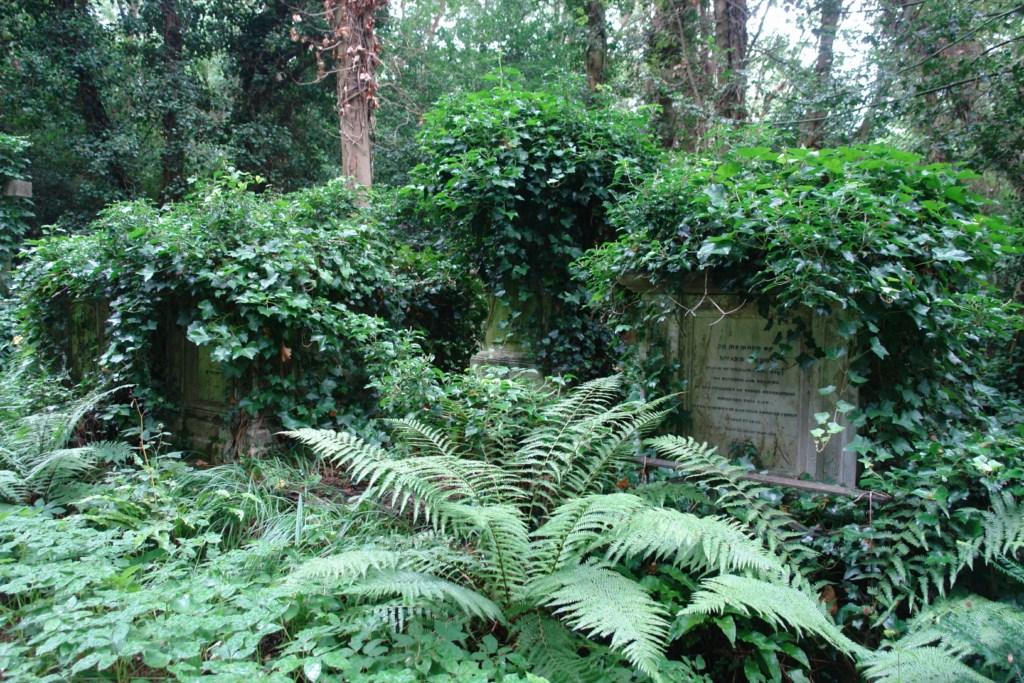 La vegetación ha contribuido a tener éste magnífico y mágico patrimonio en Londres. highgate cemetery - 5517750690 6930386759 o - Highgate Cemetery de Londres, donde a la muerte se le llama arte