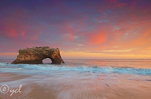 Natural Bridges, Santa Cruz, California