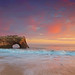 Natural Bridges, Santa Cruz, California by Yan L Photography