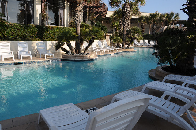 Swimming Pool Hotel Galvez Galveston Texas Tx Palm Trees