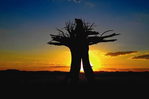 沙漠景色 圖片提供:陳維滄
