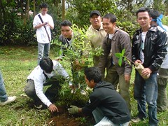 farmworker(0.0), agriculture(1.0), tree(1.0), plant(1.0), gardener(1.0), plantation(1.0),