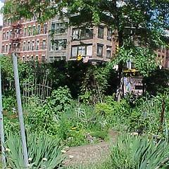 6th Street & Avenue B Garden