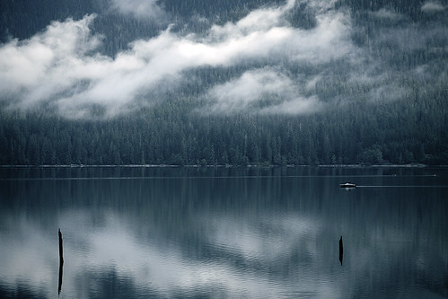 Reflection - Lake Quinault