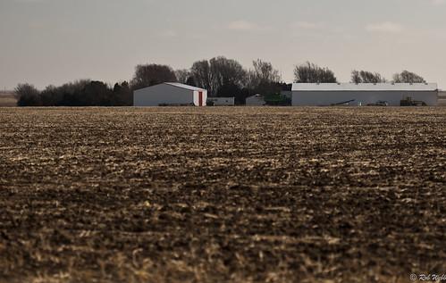 field farm ks kansas