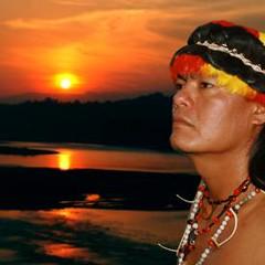 main profile image