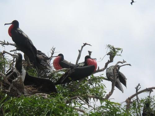 Parque Machalilla