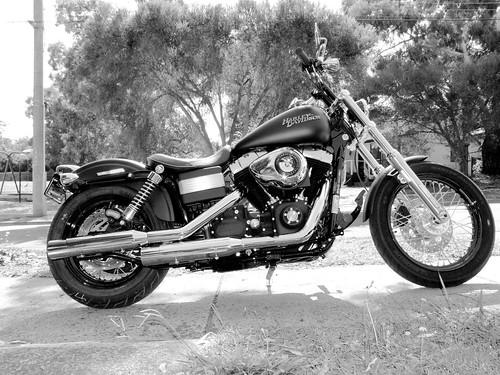 Harley davidson chromed