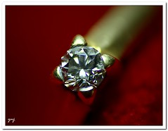 ruby(0.0), petal(0.0), ring(1.0), jewellery(1.0), diamond(1.0), gemstone(1.0),