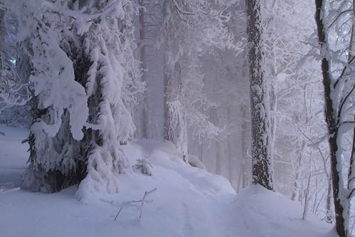 winter cold fog sunrise canon suomi finland haze stream frost rapids 7d february talvi vesi 30d glacial laukaa usva sumu koski auringonnousu helmikuu kylmä virta pakkanen kuura äänekoski kapeenkoski 2410540lisusm hyinen 7020040lissum