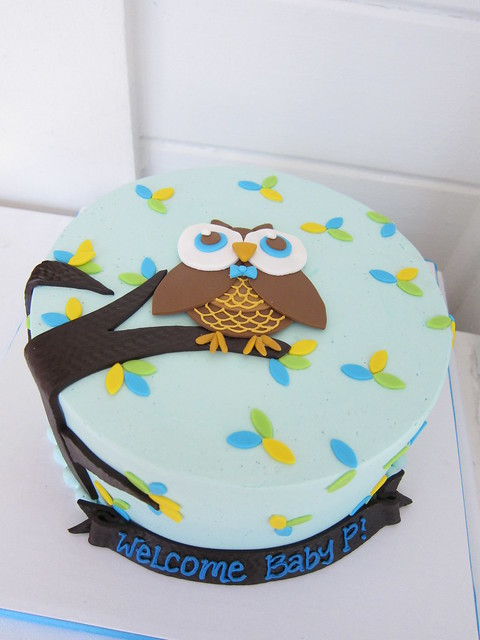 owl baby shower cake flickr photo sharing