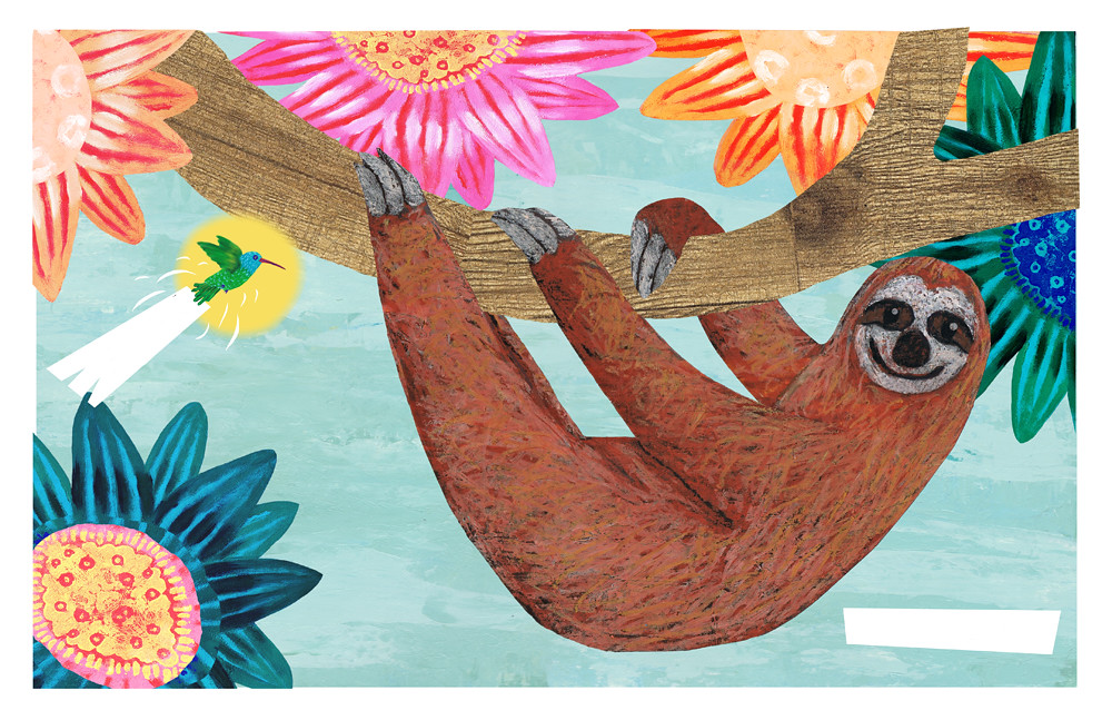 hummingbird and sloth