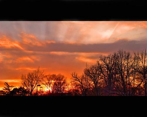 street trees sunset chicago nature colors 35mm landscapes nikon parkinglot photographer outdoor hoffmanestates hdr pseudo cloudscapes mygearandme mygearandmepremium mygearandmebronze