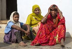 Khilchipur Village, India 2011