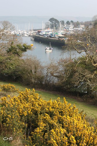Mylor Creek and Harbour by Stocker Images