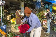 Flower Market, Delhi, India 2011