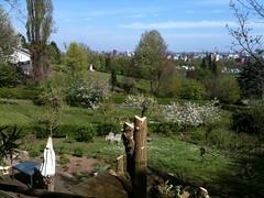 Leuk tuintje, leuk uitzicht... #Maastricht #lente