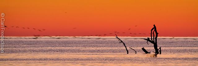 Sunrise twilight