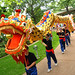 Chinese Dragon Parade