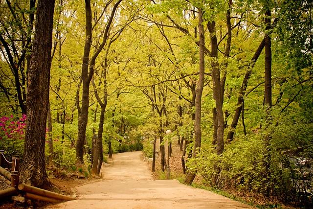 Ogeum Park
