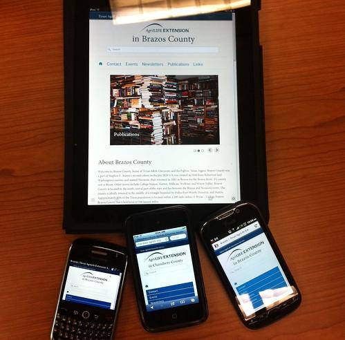 Mobile-Friendly Website - Boston