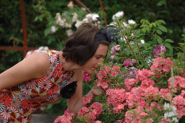 Humons le parfum des Roses