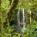 Waterfall and Lush Landscape - Mt. Kilimanjaro, Tanzania