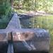 Suraci's Pond