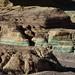 Mine Tailings; Minas de Nacozari de Garcia, Sonora, Mexico por Lon&Queta