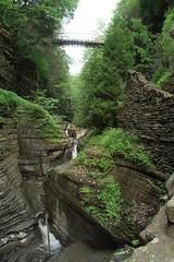 Watkins Glen Gorge 6