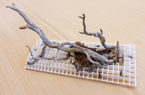 aquarium driftwood arrangement