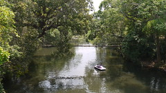 ... river Cauvery at Nisargadhama