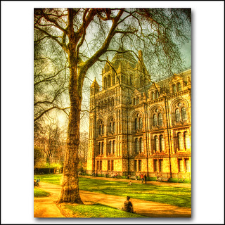 London . the Natural History museum HDR