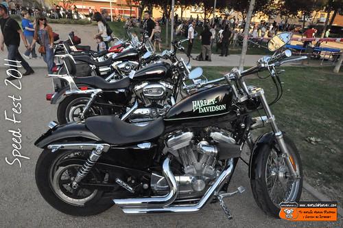 Harley-Davidson aparcadas