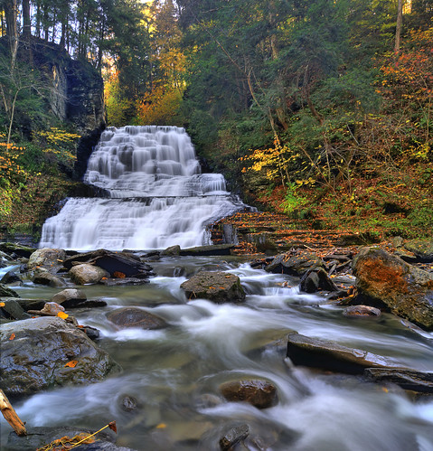 ny fall creek forest waterfall stream hiking upstate glen waterfalls gorge hiker fillmore fingerlakes gully moravia