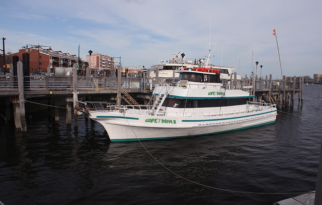 Capt dave ll at sheepshead bay brooklyn new york usa for Sheepshead bay fishing boats
