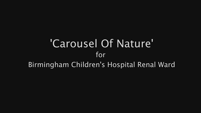Carousel Of Nature