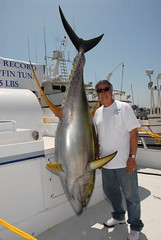 cod(0.0), jigging(0.0), swordfish(0.0), animal(1.0), tuna(1.0), fish(1.0), fishing(1.0), big game fishing(1.0),
