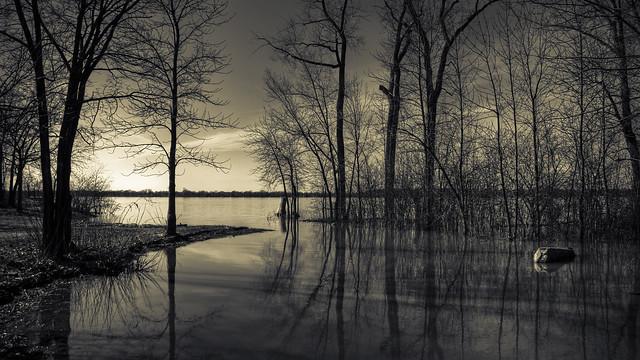 landscape (series)