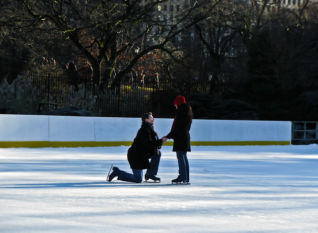 Steven's Central Park Marriage Proposal