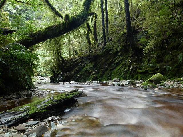 Blackwater Creek, Waiuta, West Coast