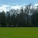 Rugby au Stanley Park