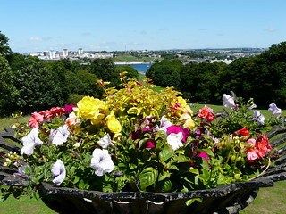 Flowers and Devonport