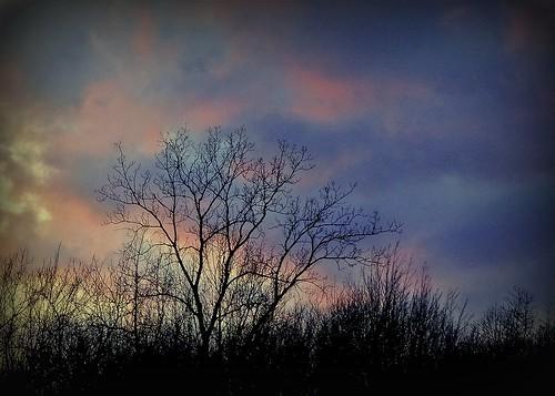 sunset ohio cleveland kirtland holdenarboretum nicetoseesomecolor lanterncourt coolspringday sunsetslastglow