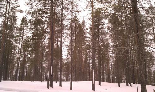 kuusamo oivanki finland2011