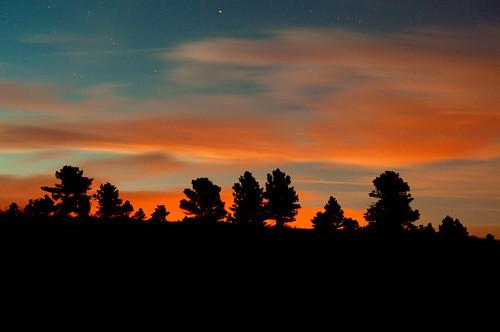 blue sunset orange tree green silhouette star colorado trails hike springs strattonopenspace