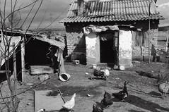 Slum in Medgidia