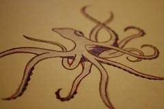 Squid I drew